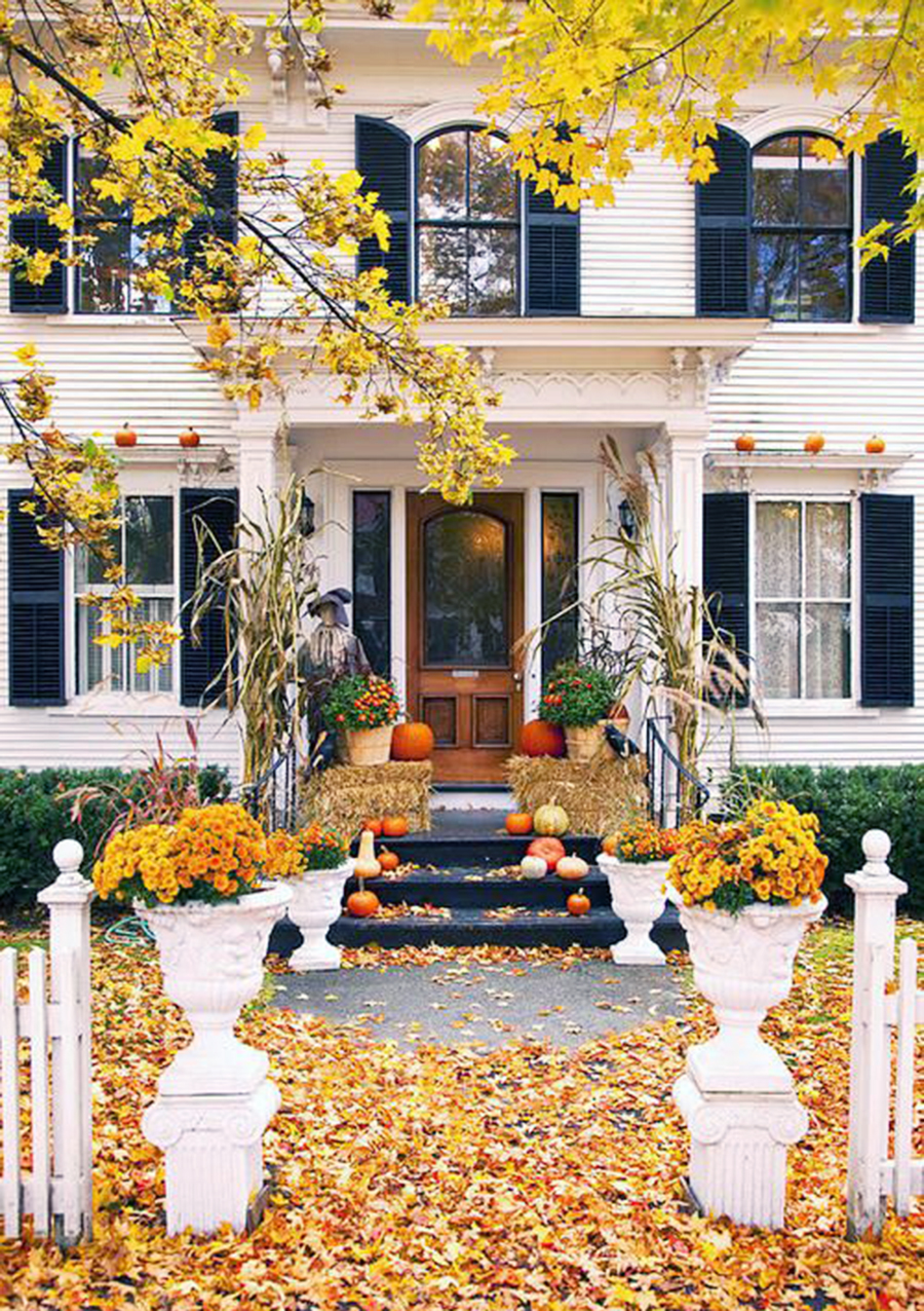 It s september 1 i am decorating for fall the elizabeth - How to decorate my home ...